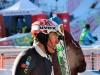 Slalom speciale maschile Santa Caterina Valfurva 6 gennaio 2016. Credits: Ivan Carabini